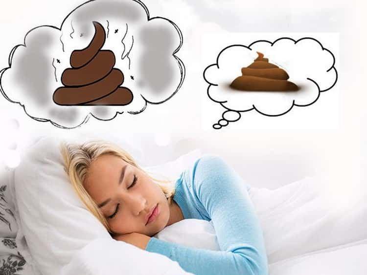 к чему сниться говно