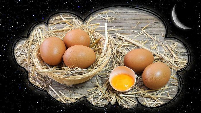 сон яйца