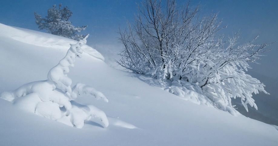 Что означаете видеть во сне снег: толкование сна по сонникам